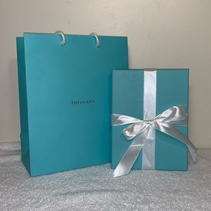 TIFFANY & CO. Empty Gift Box, Bag, and Suede Case
